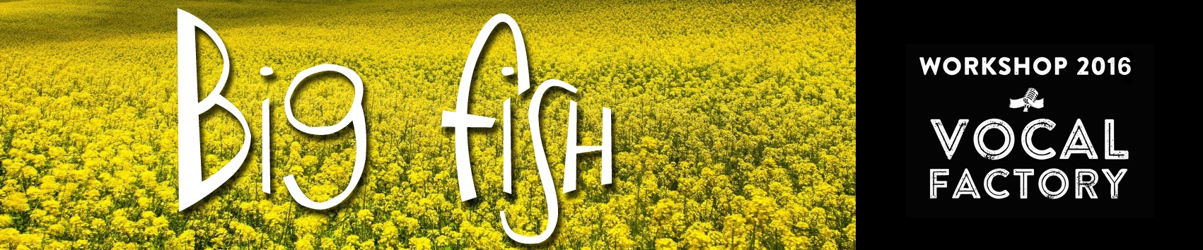 07_Banner_BIGFISH
